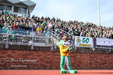 The mascot for the Pratt Greenbacks leads the crowd in a cheer. The Pratt Greenbacks defeated the Hayden Wildcats 48 to 14 to win the KSHSAA Class 4A Division II State Championship Game at Salina Stadium in Salina, Kansas on November 26, 2016. (Photo: Joey Bahr, www.joeybahr.com)