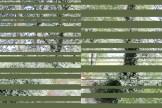 20100627-chinos 1