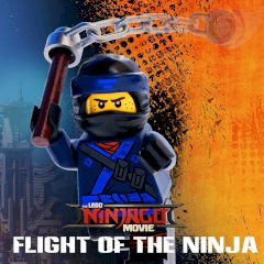 Ninjago : Flight of the Ninja