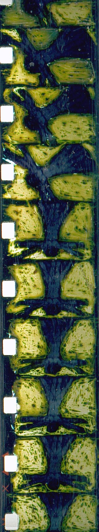 totalite-super-8-film-johanna-vaude-hand-painting_10