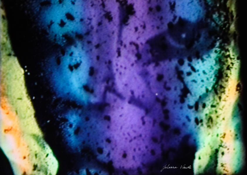 johanna-vaude-Autoportrait-monde_01
