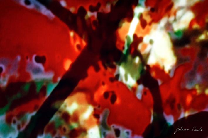johanna-vaude-samourai-experimental-film_09
