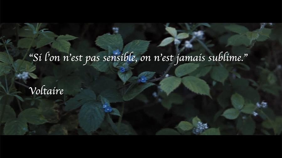 Romantisme-par-johanna-vaude-01