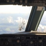 Bird Strike B738