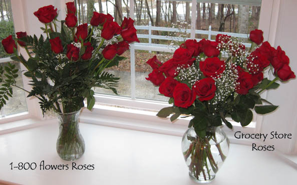 Both Sets of Roses
