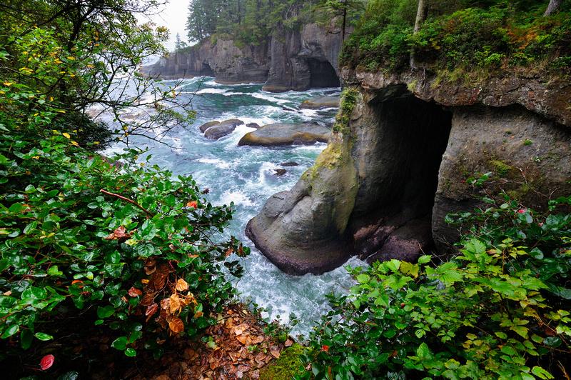 Cape Flattery, Olympic National Park, Washington