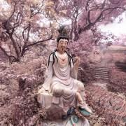 20120216_延慶寺1