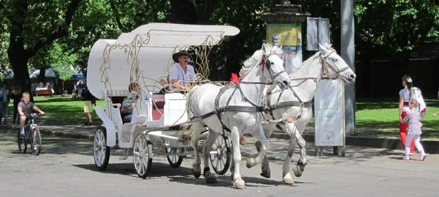 Lviv Horse Carriage