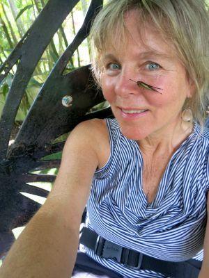 25.5 Penang, Malaysia Deirdra Butterfly Park John Doan