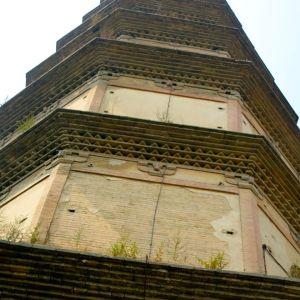 Pagoda Close John Doan