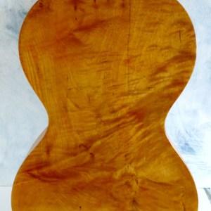 Guitar Stauffer 5