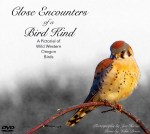 Album cover for Close Encounters of a Bird Kind DVD video.