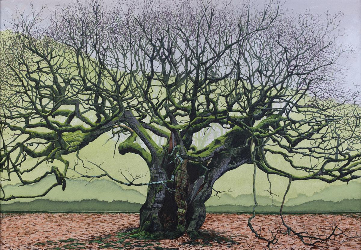 Painting of The Allerton Oak in Calderstones Park Liverpool