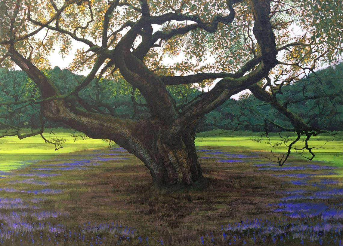 Painting of The Allerton Oak (2020)