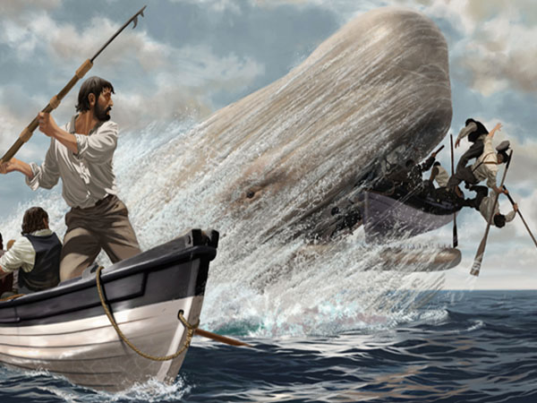 Moby Dick: Chapters 42-51