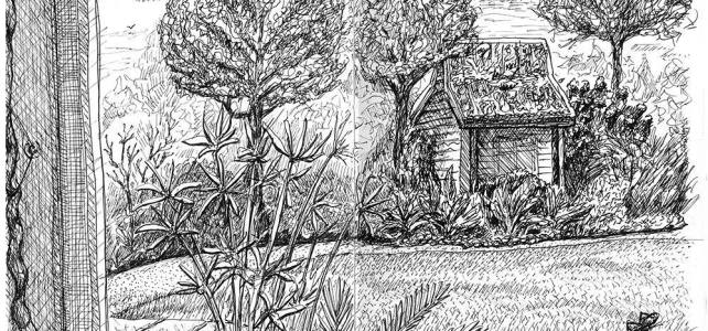 Sketch I did a while back at the arboretum before or read so cold and rainy