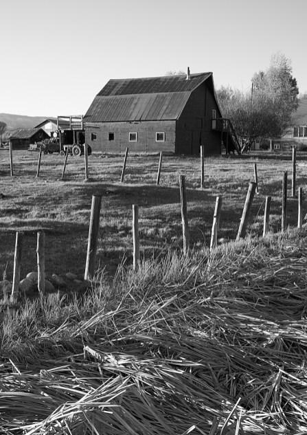 barn and fenceposts salt creek rd