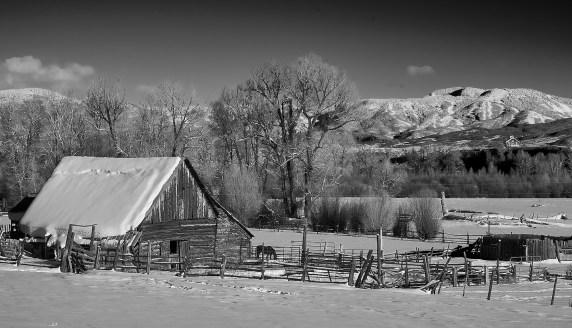 wheeler ranch barn no 1