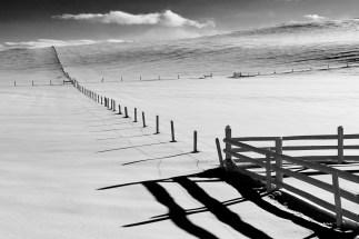 20 mile fences