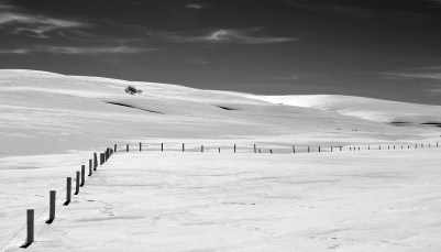 long draw fence in winter