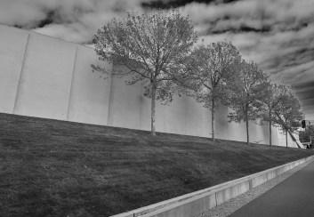 seattle tree line