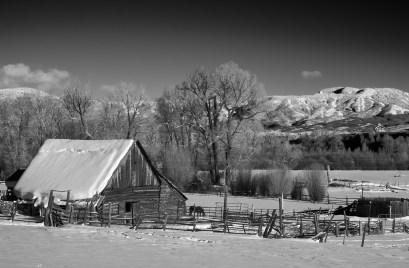 wheeler ranch