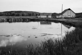 dayglow barns reflection