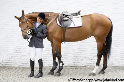 Image result for horse wearing english saddle