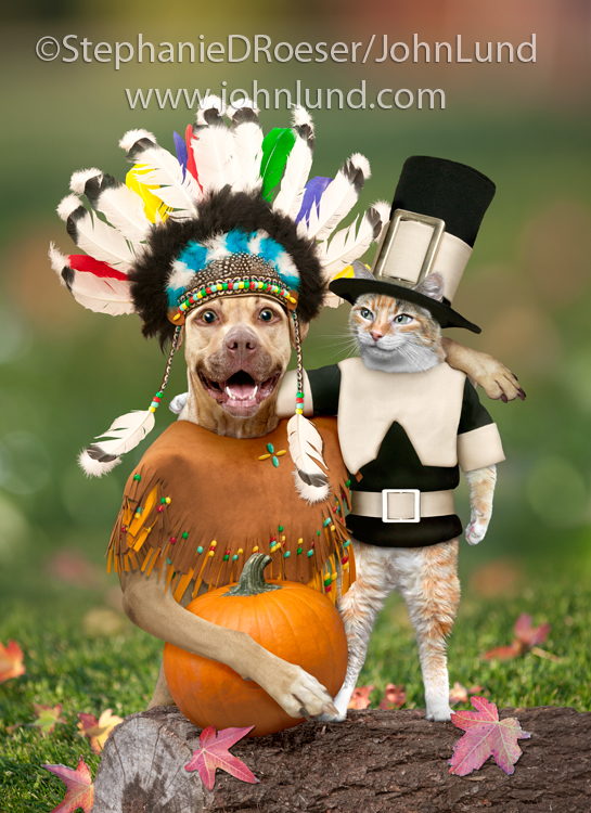 Funny Pet Picture Of Thanksgiving Pets