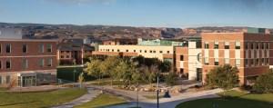 Mesa State College