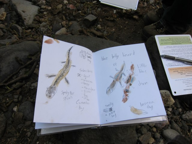 photograph of student journal painted with natural pigments from local rocks