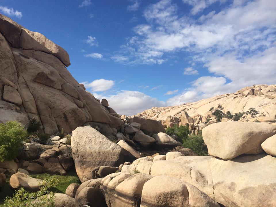 Hidden Valley Joshua Tree