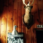 The bar at Mad River Barn, Waitsfield, Vermont