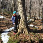 Enjoying early spring on Mad River Glen's nature hike
