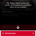 Avis return now