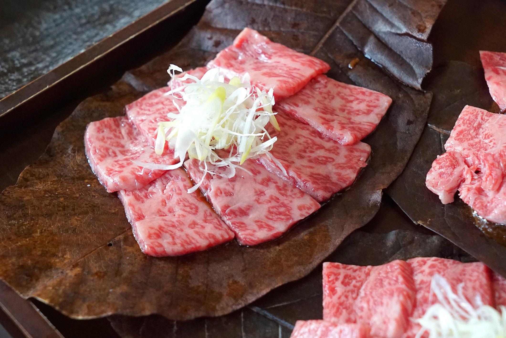 Image result for Hida gyu beef japan
