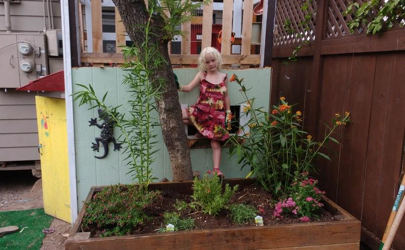 A Small Butterfly Garden