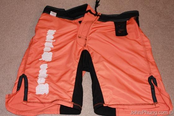board-shorts (6)