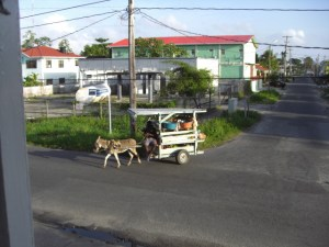 Guyana modern transport (2)