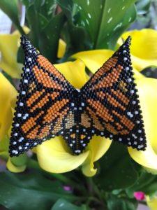 Butterfly Ketki Desai, Member