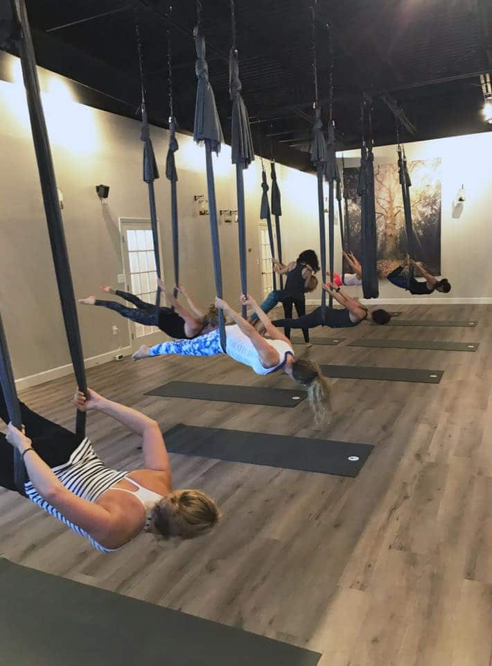 grey_owl-aerial-yoga