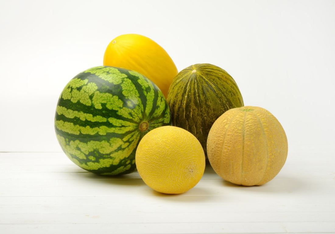 Caito Foods Melon Recall Lawsuit | Johnson // Becker
