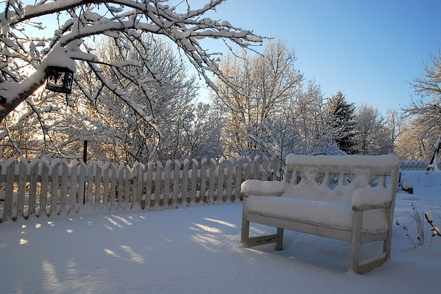 Snow-covered bench, Anne Arundel County, Johnson Lumber