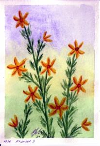 411 FLOWER 3