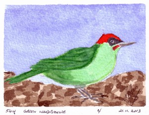 544 GREEN WOODPECKER