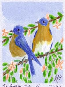 559 BLUEBIRDS NO. 2