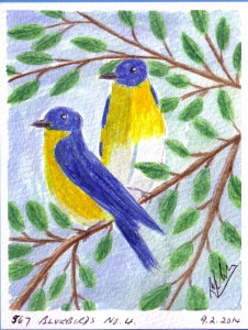 567 BLUEBIRDS NO. 4