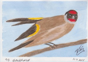 713 GOLDFINCH