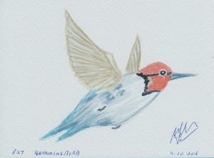 827 HUMMINGBIRD
