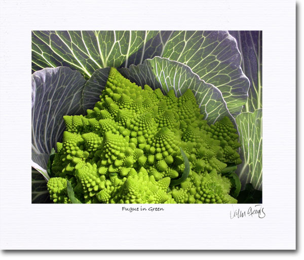 A composite photo featuring romanesque broccoli and cabbage leaves for the invention of a new vegetable